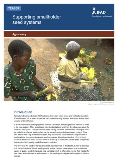 Toolkit: Supporting smallholder seed systems