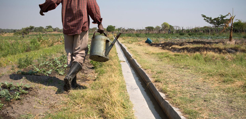 Invitation to bid: Pro-poor agricultural innovation system