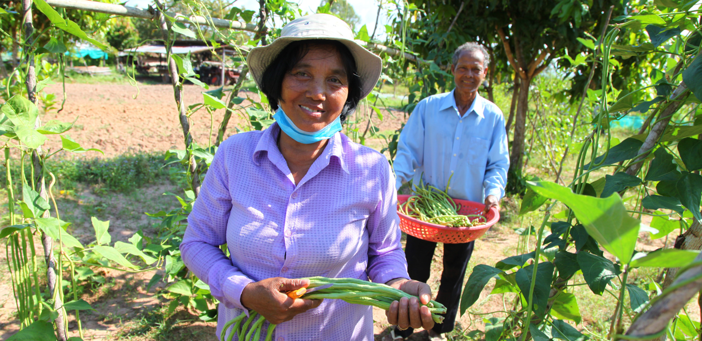 Small-scale farmers can help build resilient food systems in a post–COVID-19  world